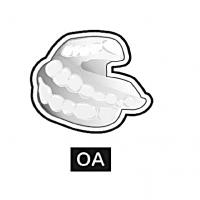 2/3睡眠時無呼吸症(SAS)の口腔内装置(OA)治療医療連携のための講習会